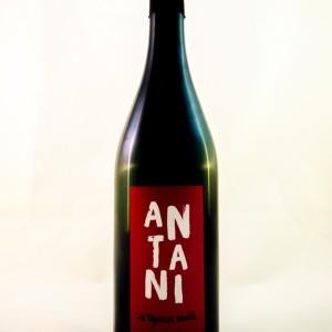 antani-tognazza