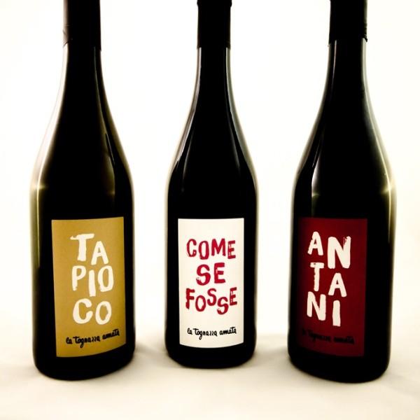 i vini tognazza